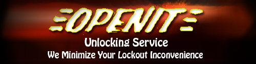 OpenIt Unlocking Services, Logo